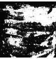 birch bark vector image