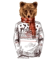Bear dressed in knitted sweater vector image