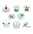Assorted restaurant and vegetarian food symbols or vector image vector image