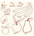 fruits set line design vector image