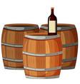Wine bottle on wooden barrels vector image