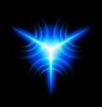 Digital star vector image vector image