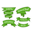 natural food eco organic product vector image