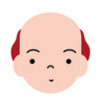 old man face with hair design vector image