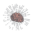 brain storm isolated icon vector image