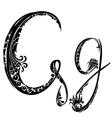 Letter G g vector image