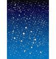 snowflake sky vector image