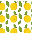 lemon fruit background vector image