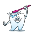 Cartoon happy tooth with brush vector image