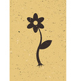 Flower on old cardboard vector image