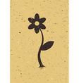Flower on old cardboard vector image