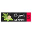 green kohlrabi coupon vaucher template vector image