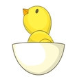 Chick icon cartoon style vector image