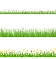 Green Grass Nature Horizontal Borders Set vector image