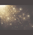 gold glittering star dust vector image