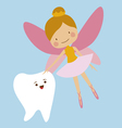 tooth and fairy vector image