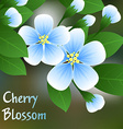 Flowering cherry Blue flowers on a branch with vector image