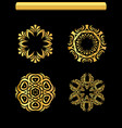 gold ornaments se vector image