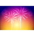 Bright fireworks background vector image
