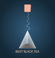 Isolated pyramid of black tea with label vector image