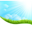 Of Summer Grass vector image vector image