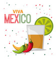 viva mexico greeting drink confetti vector image