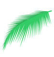 palm leaf object vector image