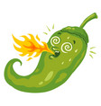 chili pepper with flame vector image vector image