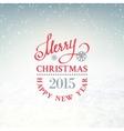 Christmas snow environment vector image