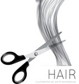 Hair and scissors on a white background vector image vector image
