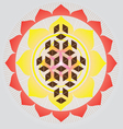 Flower of life seed vector image