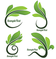 leaves forms vector image vector image