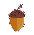 Nut seed isolated icon vector image