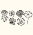 set vintage flowers vector image