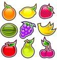 glossy fruits vector image vector image