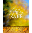 Autumn Sale Background With Colorful Leaves vector image vector image