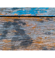 Tracing - texture and pattern of wooden plank vector image