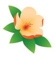 flower on white background vector image vector image
