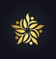 gold leaf decoration ecology logo vector image
