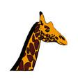 Head giraffe animal herbivore african wildlife vector image