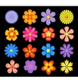 Set of floral elements and blossoms vector image vector image