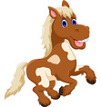 funny horse cartoon jumping vector image vector image