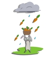 Rain for hare vector image