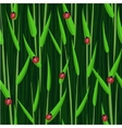 grass ladybird seamless background vector image
