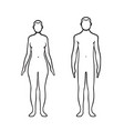woman and man bodies vector image