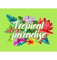 Print with Thailand flowers Tropical multicolor vector image