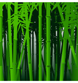 decorative bamboo background vector image vector image