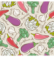 Background with pepper eggplant cauliflower vector image
