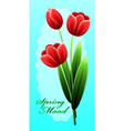 Red tulips International Happy Mothers Day with vector image