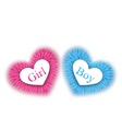 pink and blue baby shower reveal the gender baby vector image